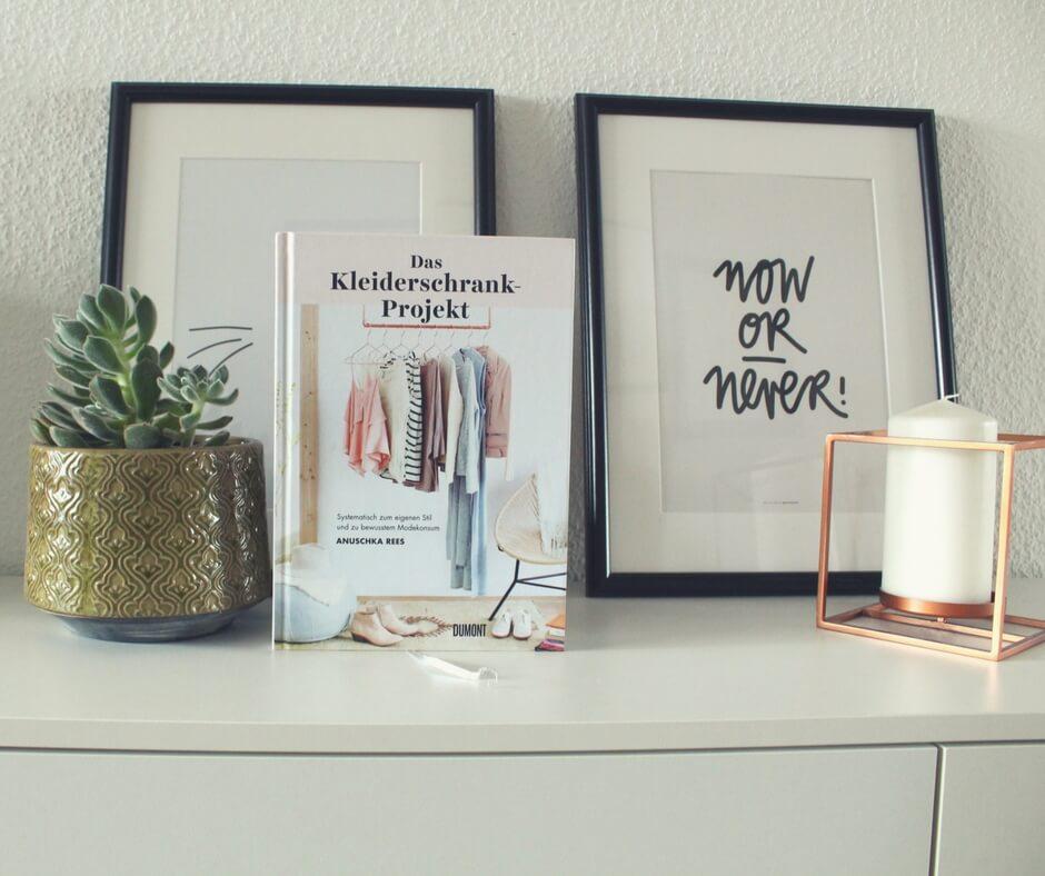Das Kleiderschrank Projekt neben Pflanze und Bild von Navucko