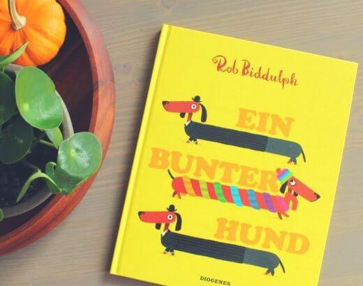 Bilderbuch von Rob Biddulph Ein bunter Hund