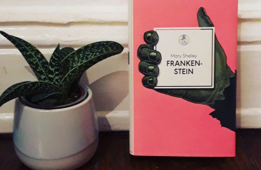 Manesse-Bibliothek | Neue Schönheiten fürs Bücherregal