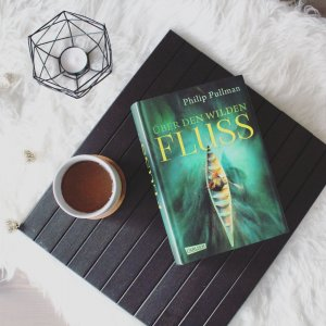 Buch Über den wilden Fluss von Philip Pullman, grünes Cover