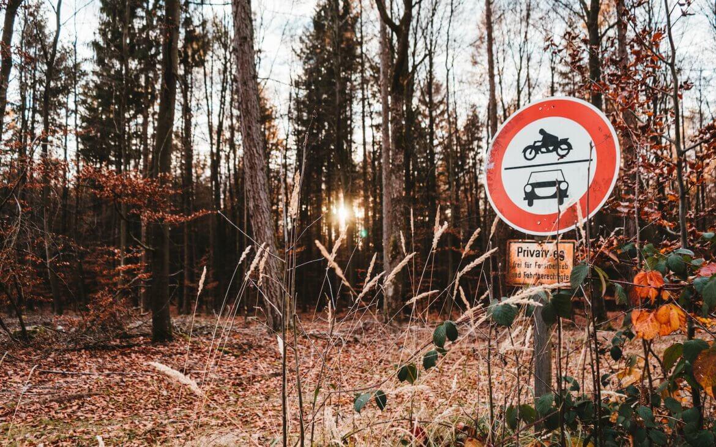 Literatur im Wald